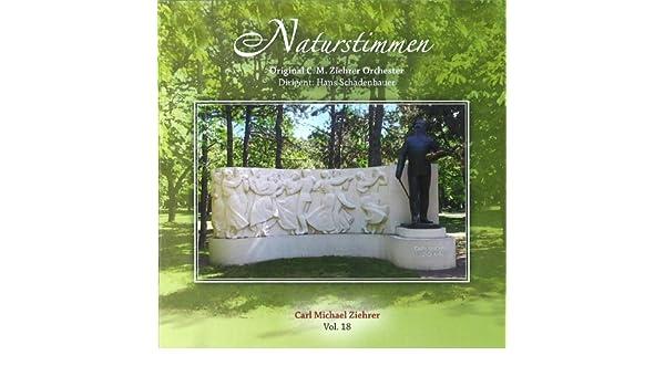 Strohfeuer-Polka de Hans Schadenbauer en Amazon Music ...