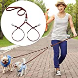 Double Dog Leash - PET ARTIST No Tangle Dog Leash Coupler Double Leather Leash-2 Way Tangle Free Dog Splitter-Brown 4.2 feet Length-Fit Puppy Medium&Small Dog Daily Walking for Two Dogs