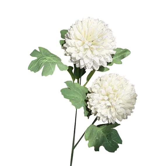 ... Grandes Tallo Largo Altos Mesa Orquideas,Seda Artificial Flores Falsas Diente De León Boda Floral Ramo Hortensia Decoración WH(Blanco): Amazon.es: Hogar