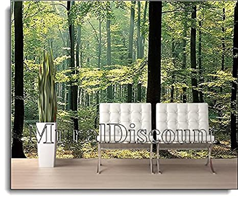 Amazon Com Enchanted Forest Huge Wall Mural 12 Feet 6 Inch Wide X 9 Feet High Covers An Entire Wall Wall Murals Nature Posters Prints