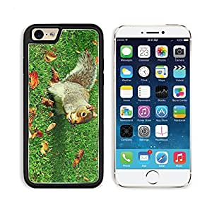 Squirrel Eating In The Park 3DArt Iphone 6 Snap Cover Premium Aluminium Design Case Customized Made to Order