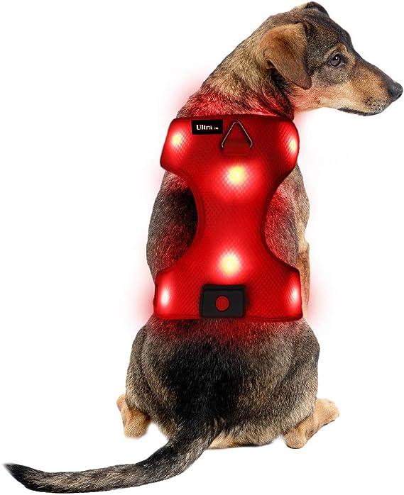 Mittel Rot Wiederaufladbare Usb Led Hundegeschirr Beleuchtetes Hundegeschirr Leuchtend Aufladbar Licht Hunde Weste Led Hund Geschirr Led Hundegeschirr Sicherheitsgeschirr Hund Led Hunde Zubehör Haustier