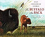 img - for The Buffalo Are Back book / textbook / text book