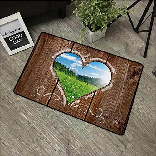 - Living Room Door mat W24 x L35 INCH Outhouse,Heart Window View from Wooden Rustic Farm Barn Shed with Chalk Art Image,Brown Blue and Green with Non-Slip Backing Door Mat Carpet