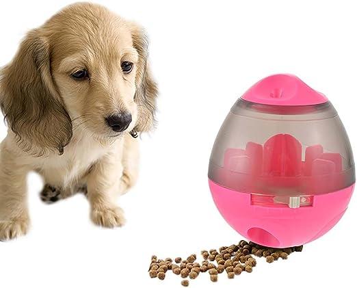Urijk - Pelota de Comida para Perro o Gato Visible, Transparente ...