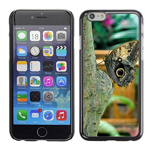 """Premio Sottile Slim Cassa Custodia Case Cover Shell // F00009825 papillon // Apple iPhone 6 6S 6G PLUS 5.5"""""""