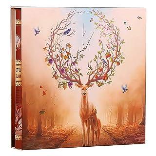 Album, album mixed interstitial family album this album album capacity 1198 sheets one loaded album photo HGXC