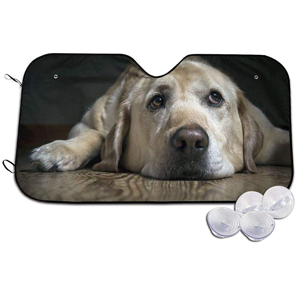 Parasole per Parabrezza,Parasole Shield Coverper Auto,Labrador Dog Universal Auto Blocker,Parasole Pieghevole per Finestra Anteriore per Auto S
