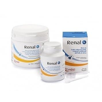 N renal piensos complementarios para perros y gatos Alimentos Suplemento 240g Uso Veterinario: Amazon.es: Salud y cuidado personal