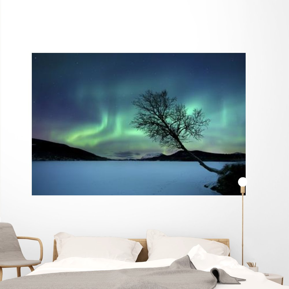 Aurora Borealis over Sandvannet Wall Mural by Wallmonkeys Peel and Stick Outer Space Graphic (72 in W x 48 in H) WM51300
