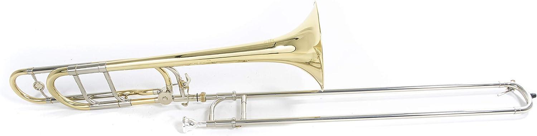 Roy Benson 701146 - Trombón tenor en Sib/Fa TT-236F, acabado lacado, estuche ligero: Amazon.es: Instrumentos musicales