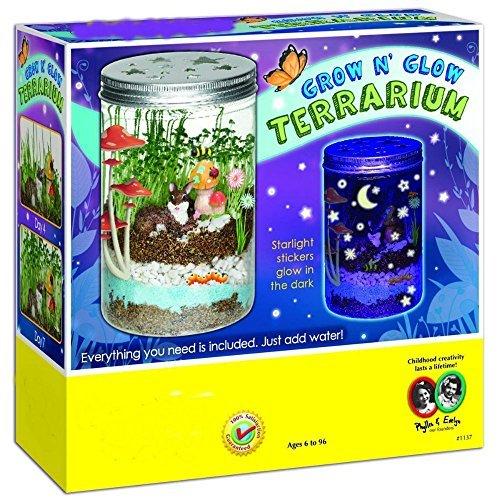 Top Botany Toys