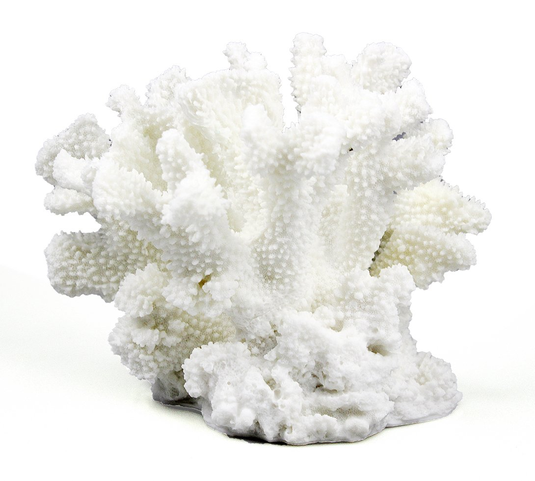 COMLZD Branch Coral Sculpture for Aquarium or Tabletop Decor, Home Office Decorative Nautical Decor Collection 9 by 6 by 7 inch by COMLZD