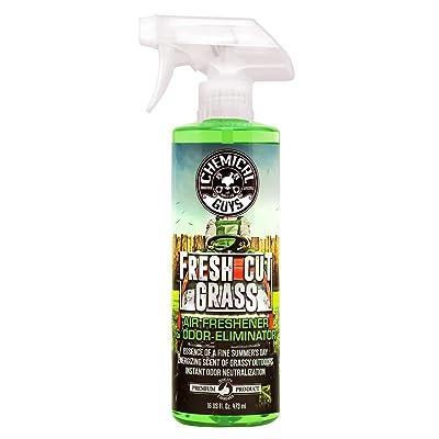 Fresh Cut Grass Air Freshener & Odor Eliminator: Automotive