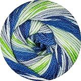 Cascade Heritage Prints Sock Yarn #58 Twelve