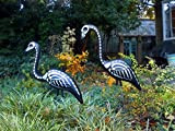 2 Pcs Superlative Popular Skeleton Flamingos Halloween Skull Haunted Scary Bird Yard Creepy Props with Metal Stakes
