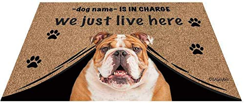 BAGEYOU Personalized Dog s Name Outdoor Doormat with My Love Dog Bulldog Welcome Floor Mat Who is in Charge We Just Live Here 35.4 x 23.6