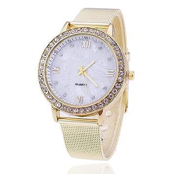 WZFCSAEAE Diamante Mujeres Relojes de Primeras Marcas de Lujo de Malla de Acero Inoxidable Reloj de