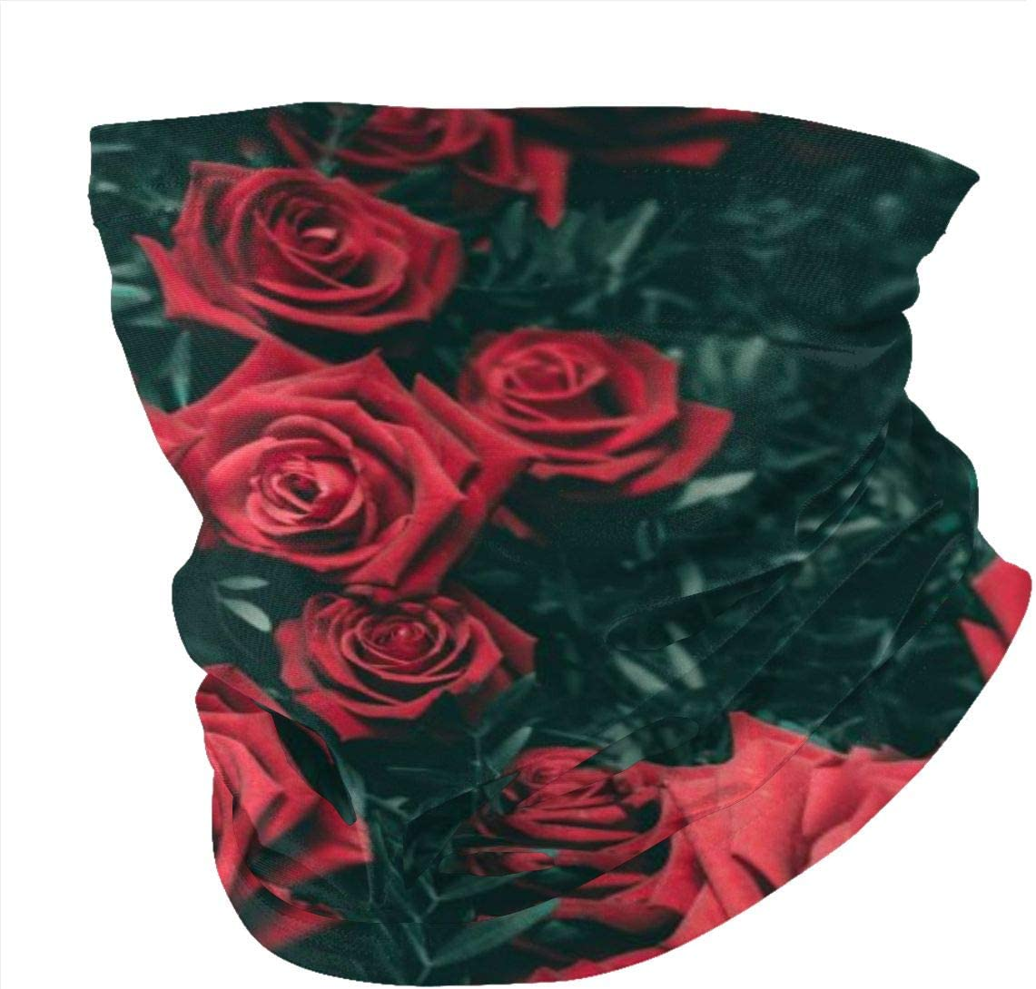 Outdoors Headwear Headwrap Balaclava Tube Mask Multifunctional Headwear Scarf Bandanna Wide Headband NA Bouquet Close up Flowers Leaves Red Roses Bandana
