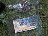 Appalachian Emporium's Live Moss Mix with British Soldier Lichen Live Fresh Moss for Terrariums Fairy Gardens Bonsai Etc.