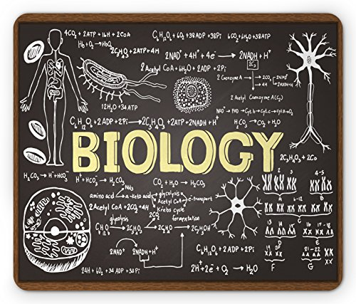 Ambesonne Educational Mouse Pad, Black Chalkboard Biology Hand Written Symbols School Classroom, Standard Size Rectangle Non-Slip Rubber Mousepad, Black Brown Pale Yellow by Ambesonne