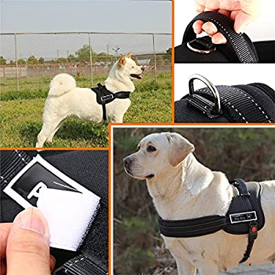 Soft Padded adjustable Harness Vest for Pet Dog Sport Working Trainning