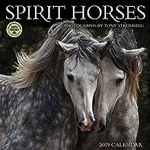 Spirit Horses 2019 Wall Calendar