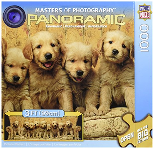 MasterPieces Picture Perfect Panoramic Jigsaw Puzzle, 1000-Piece