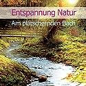 Entspannung Natur: Am plätschernden Bach Hörbuch von Karl-Heinz Dingler Gesprochen von:  div.