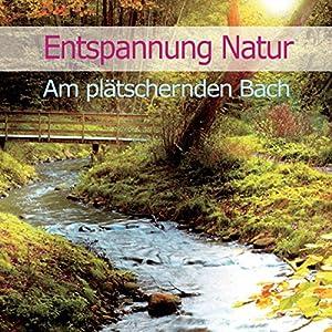 Entspannung Natur: Am plätschernden Bach Hörbuch