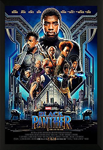 The Black Panther Superhero Action Movie Film Marvel Comics
