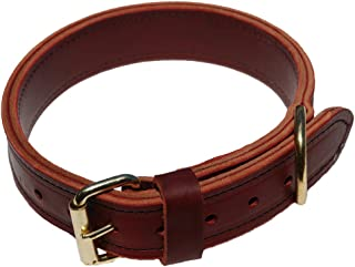 product image for Signature K9 1-1/2-Inch Agitation Collar