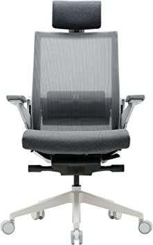SIDIZ T80 Highly Adjustable Ergonomic Office Chair (TN800HLDA)