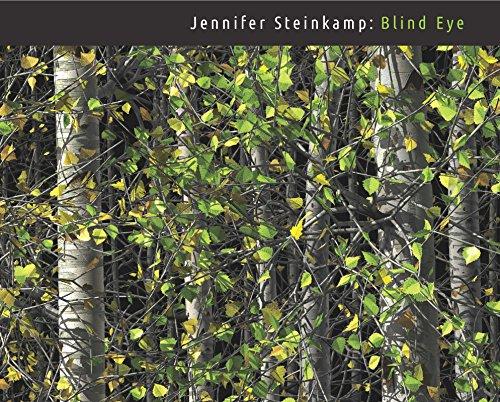 Jennifer Steinkamp: Blind Eye ()