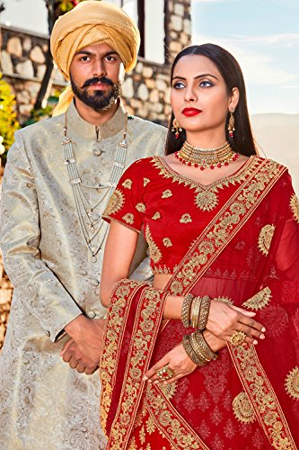Facioun Red Da Indian Choli Designer Lehenga Partywear Traditional Women 5 Ethnic qCz5dxwnCS