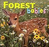 Forest Babies, Kristen McCurry, Aimee Jackson, 1559718749