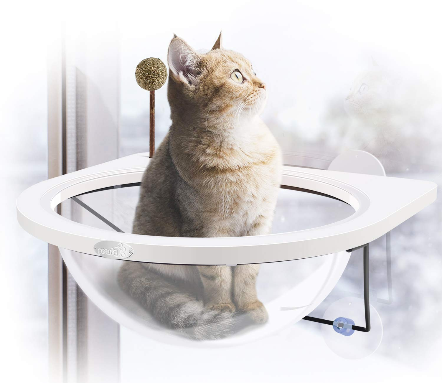 Pecute Cat Window Perches [Newest Design], Cats Hammock Window Mounted Bed Sunny Seat Kitten Hanging Bed Bubble Looking, Sturdy with Advanced Fram Suction Cup-Hold Pets Up 10KG(Dia 30 CM,Catnip Bonus)