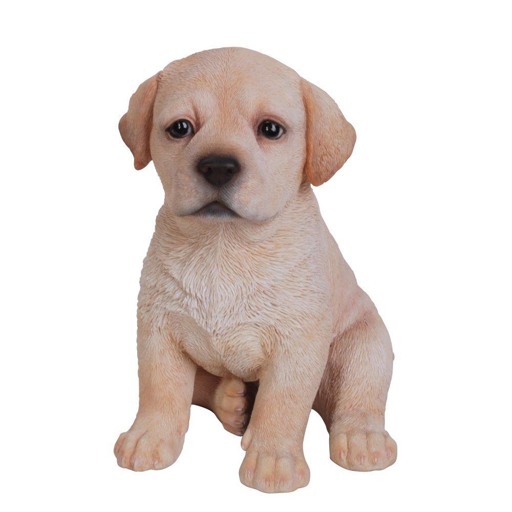 Golden Labrador Puppy Pet Pal Vivid Arts