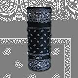 GIRAFFE Multifunctional Headwear Tunnel Tube Bandana for Motorbike, Triathlon, Bike, Cycling, Hiking, Climbing, Running, Ski, Snowboard BLACK PAISLEY by Giraffe