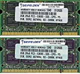 4GB (2X2GB) Memory RAM for Ace