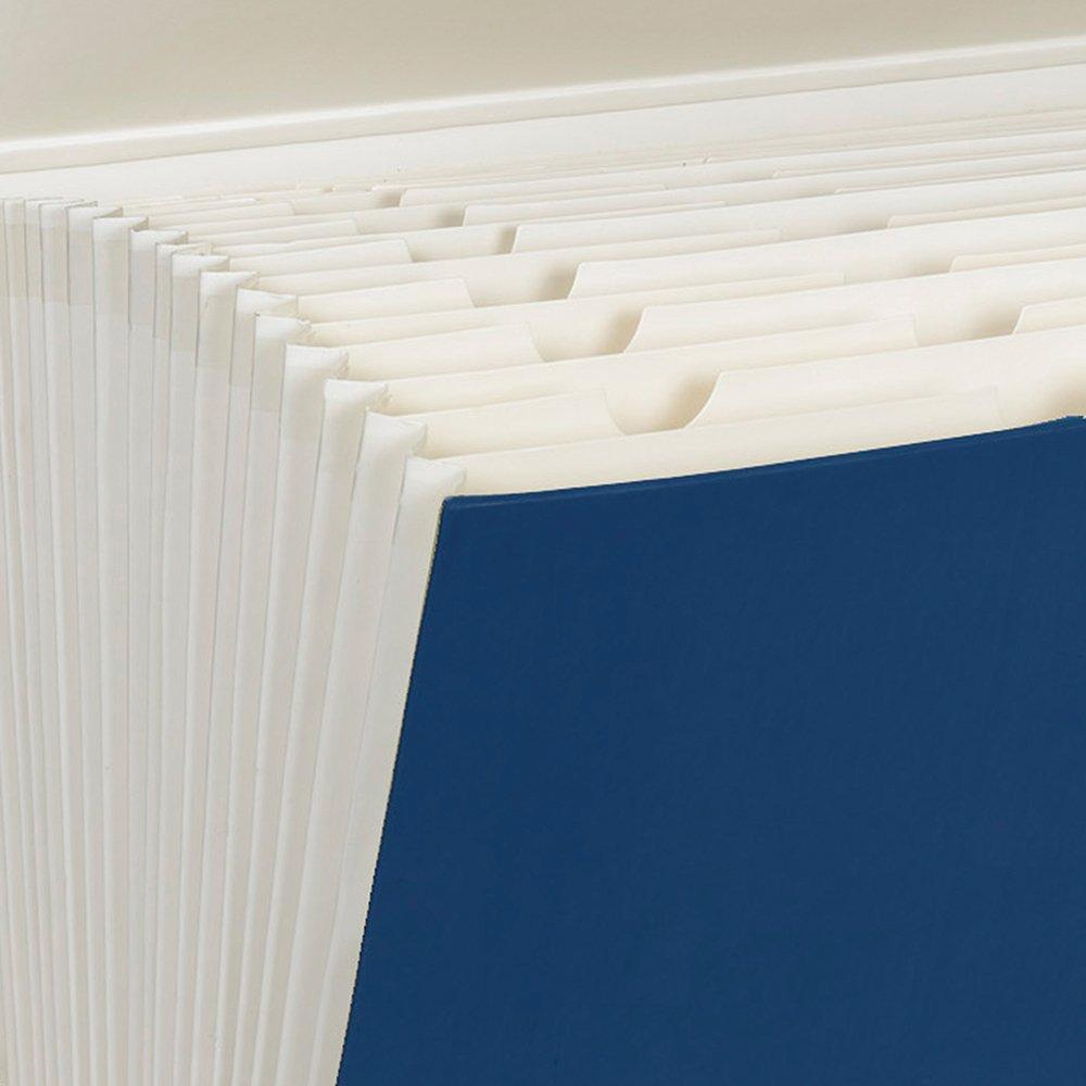 Smead Portable Expanding File Box, 19 Pockets, Blank Tabs