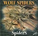 Wolf Spiders, Jason Cooper, 1595154507