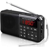 Radio Portable Rechargeable FM MP3 Haut-Parleur Lecteur de Musique Support Carte TF/Disque USB et Lampe-Torche