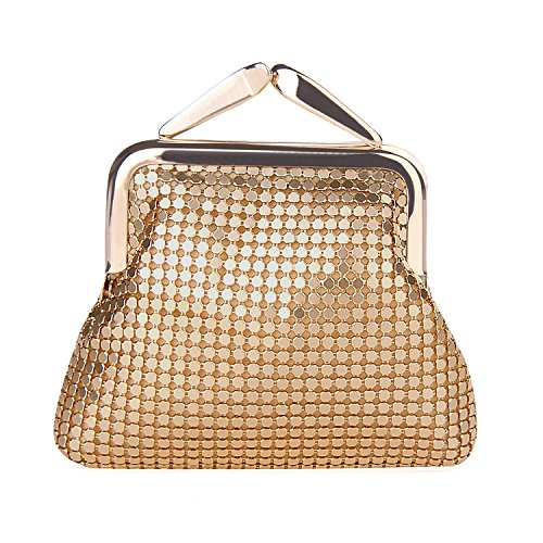 expouch Women's Small Buckle Coin Purse Classic Aluminum Metal Mesh Pouch for Women Girls (Gold)