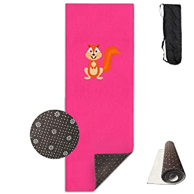 Amazon.com: Workout Mat for Yoga, Squirrel Printed Design ...