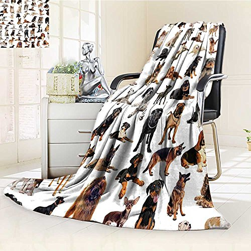 Couch Italian Black (YOYI-HOME Original Luxury Duplex Printed Blanket, Hypoallergenic,with Purebred Dogs Australian Sheepdog Belgian Boxer Italian Mastiff Brown Black Perfect for Couch or Bed/W59 x H39.5)