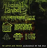 To Grind & Pound: Allegiance of the Sick by Holocausto Canibal