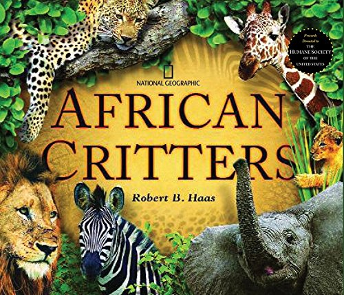 African Critters -