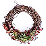"Furrow & Vine – Fresh and Living Air Plant Grapevine Wreath (14"" Natural) – Handcrafted in the USA – Decorates any Door or Wall Inside or Outside"