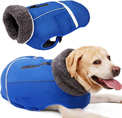 Reversible Dog Coat Water-Resistant Dog Jacket with Reflective Trim Dog Coat for Cold Weather X-Large Ink Blue Kurgo Loft Jacket
